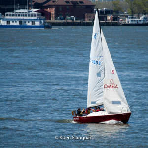 The Stag Hound, one of the sailing boats based in the North Cove Marina, makes its way upstream on the Hudson River, with the Honorable William Wall in the background (Image: koen blanquart)