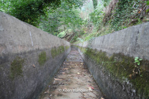 The inside of a Levada in Madeira