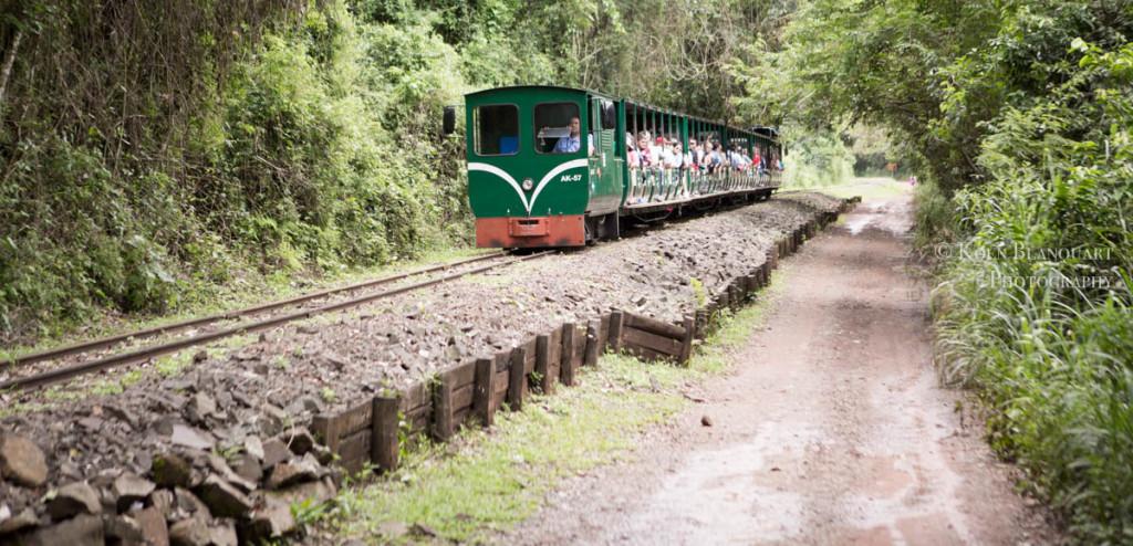 Train in Iguazu Falls